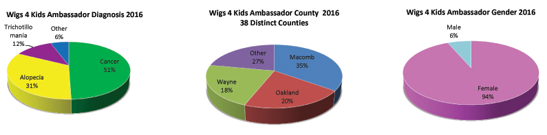 Wigs4Kids of Michigan - Statistics - statistics