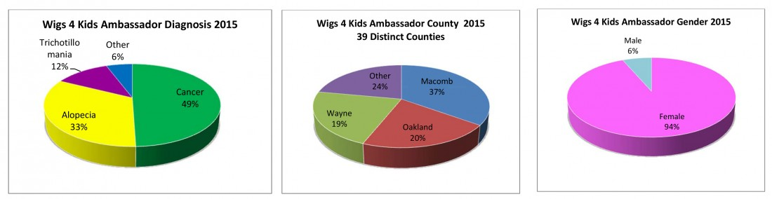 Wigs4Kids of Michigan - Statistics - statspiecharts