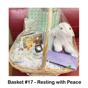 Crystal Angel, Tea Cup & Saucer, Lamb Stuffed Animal,            Notepad,          Cucumber Face Mask,             Coconut Oil, Purple Christian Check Book,               Bible Memory Devotional,           Green Notebook,                          Mint Candle,                      Faith Necklace, $60 Massage Green Gift Card