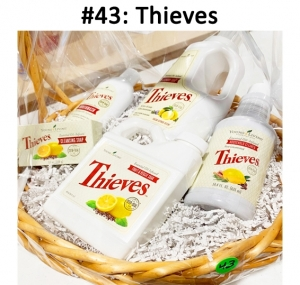 Thieves Brand: Fruit & Veggie Soak, Cleansing Soap, Household Cleaner, Laundry Soap, Mouthwash  Total Basket Value: $140.00