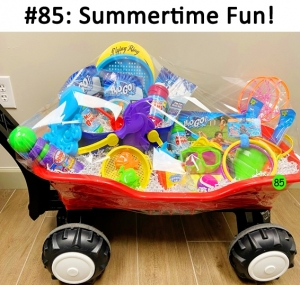 A wagon full of summertime fun toys for the perfect vacation with your loved ones!  Total Basket Value: $96.00